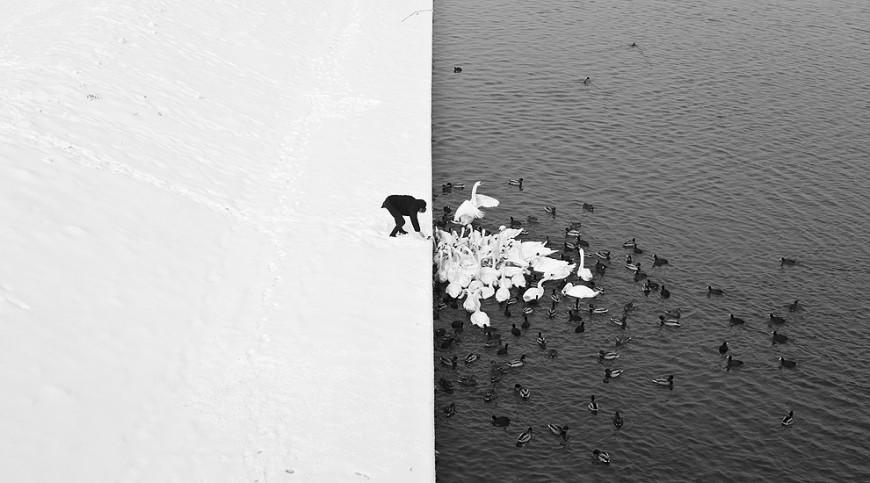 contraste-marcin-ryczek